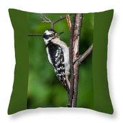 Sleepy Woodpecker Throw Pillow