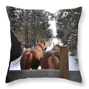 Sleigh Ride Dwn A Snowy Lane Throw Pillow