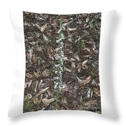 Slender Ladies Tresses Orchids Throw Pillow