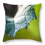 Slice Of Leaf Throw Pillow by John Wadleigh