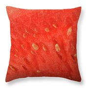 Slice Of Watermelon (detail) Throw Pillow