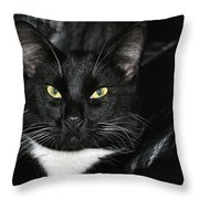 Slick The Black Cat Throw Pillow