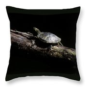 Slider  Throw Pillow