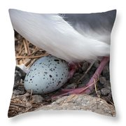 Slightly Cracked Throw Pillow