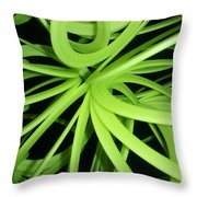 Slinky Web Throw Pillow