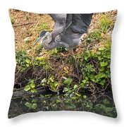 Slip Sliding  Throw Pillow
