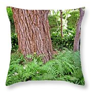 Slippery Elm And Ferns Throw Pillow