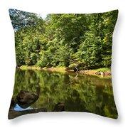 Slippery Rock Creek Throw Pillow