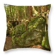 Slippery Rock Creek Bridge Throw Pillow