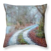 Slippery Travels Throw Pillow