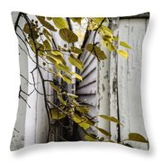 Sliver Throw Pillow