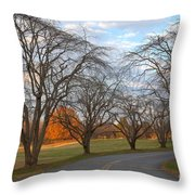 Sloan Park Sunset Throw Pillow