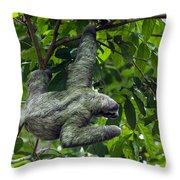 Sloth 8 Throw Pillow