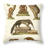 Sloths And Anteaters Throw Pillow