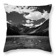 Slough Lake 5 Bw Throw Pillow