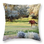 Slow And Easy Throw Pillow