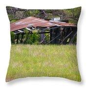 Austin Texas Slow Collapse Throw Pillow