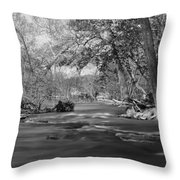 Slow Down At The River Throw Pillow