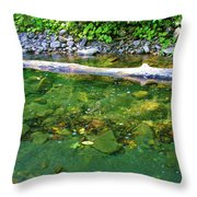 Slow Moving Sream Throw Pillow