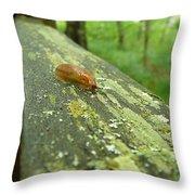 Slug Life Throw Pillow