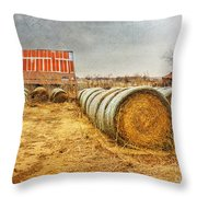 Slumbering In The Countryside Throw Pillow