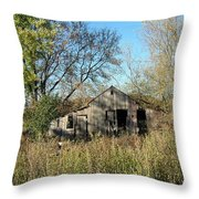 Small Abandoned Shed Throw Pillow