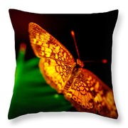 Small Butterfly Throw Pillow
