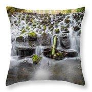 Small Cascade In Marlay Park Throw Pillow