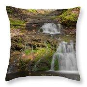 Small Falls At Parfrey's Glen Throw Pillow