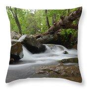 Small Falls Throw Pillow