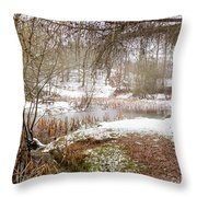Small Lake In The Snow Throw Pillow