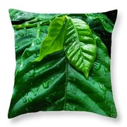 Small Leaves With Water Drops Throw Pillow