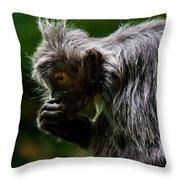 Small Monkey Eating Throw Pillow