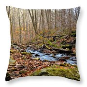 Small Pennsylvania Creek In Autumn Throw Pillow