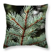 Small Pine Throw Pillow