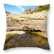 Small Pond Devonian Fossil Gorge Throw Pillow