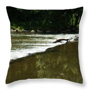 Small Ripples After Falls Throw Pillow