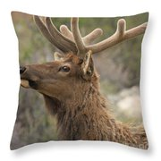 Small Roof Rack Throw Pillow