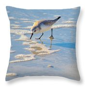 Small Sandpiper Looking For Dinner Throw Pillow
