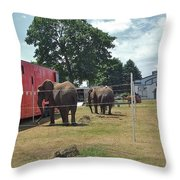 Small Town Fair Throw Pillow