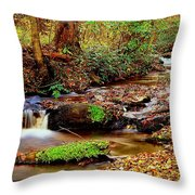 Small Waterfall And Stream 2 Throw Pillow