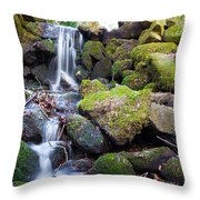 Small Waterfall In Marlay Park Dublin Throw Pillow