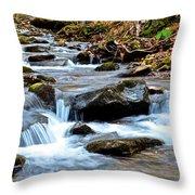 Small Waterfall In Western Pennsylvania Throw Pillow