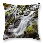 Small Waterfalls In Marlay Park Throw Pillow