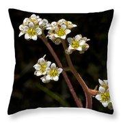 Small White Flowers Throw Pillow