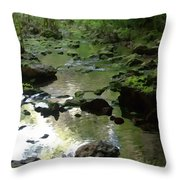 Smallin Creek Throw Pillow