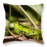 Smaragd-green Grasshopper Throw Pillow