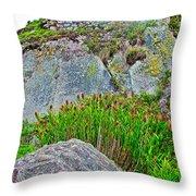 Smartweed Just Below Huayna Picchu's Peak-peru  Throw Pillow