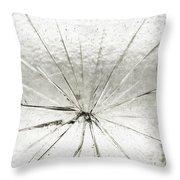 Smashing Throw Pillow
