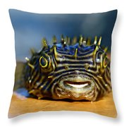 Smiley Throw Pillow by Laura Fasulo